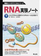 RNA実験ノート 下 小分子RNAの解析からRNAiへの応用まで (無敵のバイオテクニカルシリーズ)