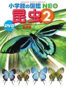 昆虫 2 地球編 (小学館の図鑑NEO)