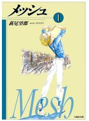 メッシュ(1)