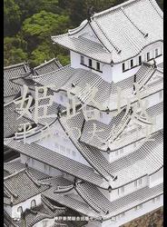 姫路城平成の大修理