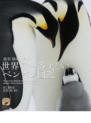絶景・秘境に息づく世界で一番美しいペンギン図鑑