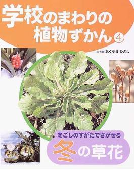 学校のまわりの植物ずかん 4 冬ごしのすがたでさがせる冬の草花