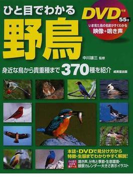 ひと目でわかる野鳥 身近な鳥から貴重種まで370種を紹介