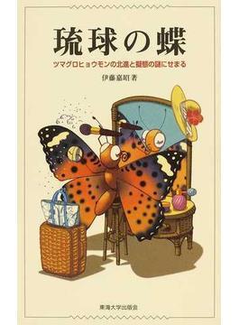 琉球の蝶 ツマグロヒョウモンの北進と擬態の謎にせまる