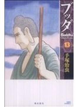 ブッダ 13(希望コミックス)