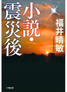 小説・震災後