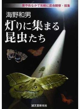 海野和男灯りに集まる昆虫たち 家や街なかで気軽に昆虫観察・採集