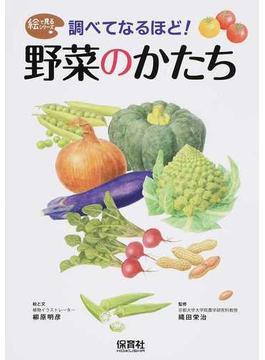 調べてなるほど!野菜のかたち
