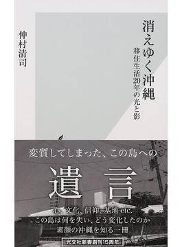 消えゆく沖縄 移住生活20年の光と影(光文社新書)