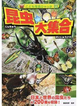 昆虫大集合