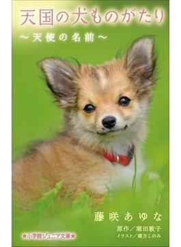 小学館ジュニア文庫 天国の犬ものがたり~天使の名前~(小学館ジュニア文庫)