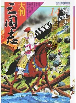 大判三国志 14(希望コミックス)
