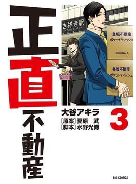 正直不動産 3 (ビッグコミックス)(ビッグコミックス)