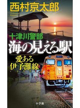 十津川警部 海の見える駅――愛ある伊予灘線