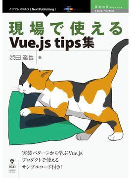 【オンデマンドブック】現場で使えるVue.js tips集