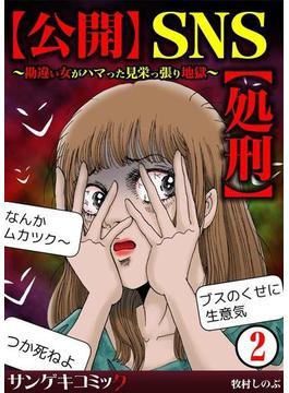 【公開】SNS【処刑】~勘違い女がハマった見栄っ張り地獄~ 2