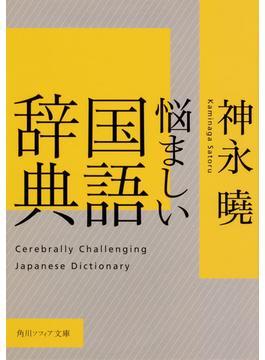 悩ましい国語辞典(角川ソフィア文庫)