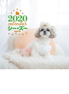 2020年 大判カレンダー  シー・ズー