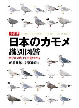 日本のカモメ識別図鑑 決定版 見分けるポイントが良くわかる