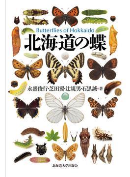 北海道の蝶