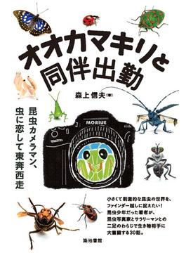 オオカマキリと同伴出勤 昆虫カメラマン、虫に恋して東奔西走