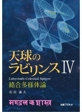 天球のラビリンス 4 絡合多様体論