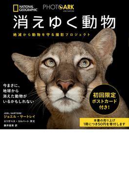 消えゆく動物 絶滅から動物を守る撮影プロジェクト