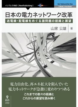 日本の電力ネットワーク改革