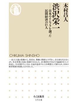 渋沢栄一 ――日本のインフラを創った民間経済の巨人(ちくま新書)