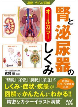 腎と泌尿器のしくみ