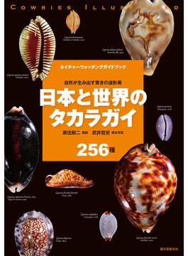 日本と世界のタカラガイ 自然が生み出す驚きの造形美 256種