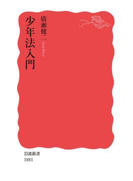 少年法入門(岩波新書 新赤版)