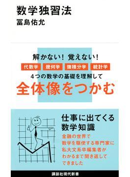 数学独習法(講談社現代新書)