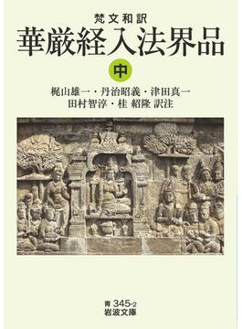梵文和訳華厳経入法界品 中(岩波文庫)