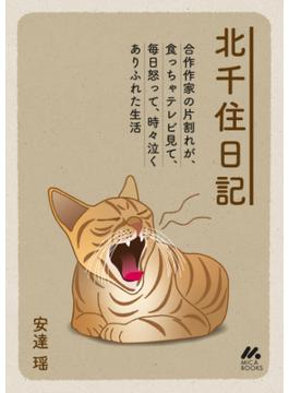 北千住日記(マイカ文庫)